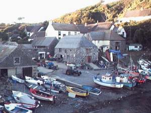 Cadgwith, evening sunshine
